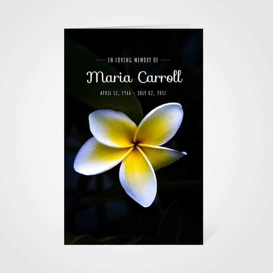 Free funeral program template hawaiian flower on a dark background beautiful flower background izmirmasajfo