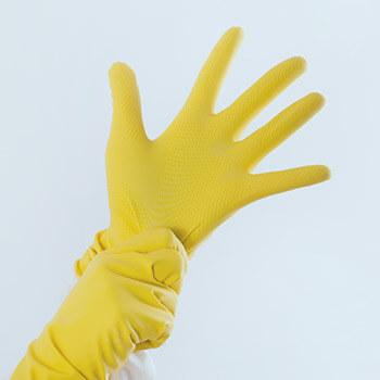 Sanitation Gloves | Eco Bear