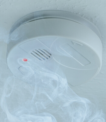 Smoke Detector | Eco Bear